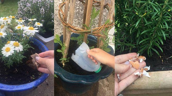 Maneras extrañas para utilizar 21 artículos para el hogar en su jardín
